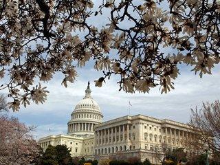 Senate committee delays vote on Mueller bill