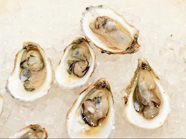 Canadian Raw Oysters Are Behind a Norovirus Outbreak in California