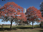 The first day of fall is here: 5 things to know